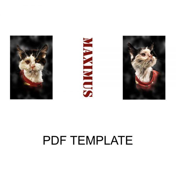 Max Soldier Mug Template PDF